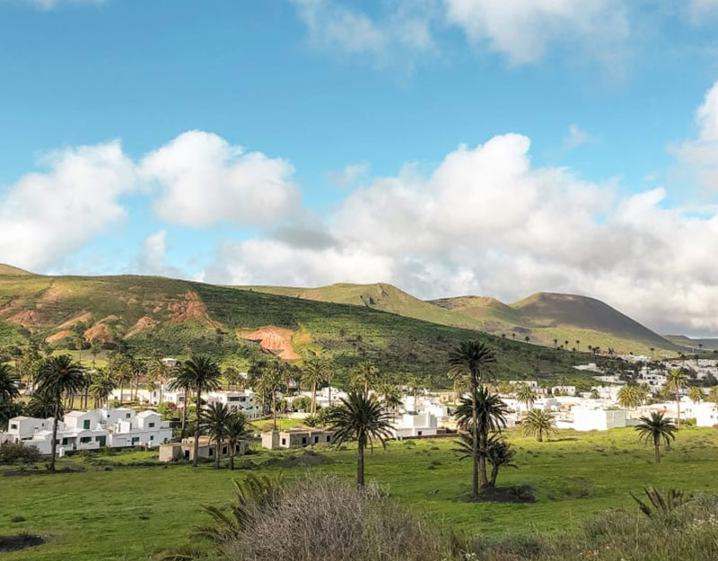 Tour the town of Haría and its palm trees